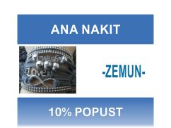 LOGO_ANA_NAKIT_ZEMUN